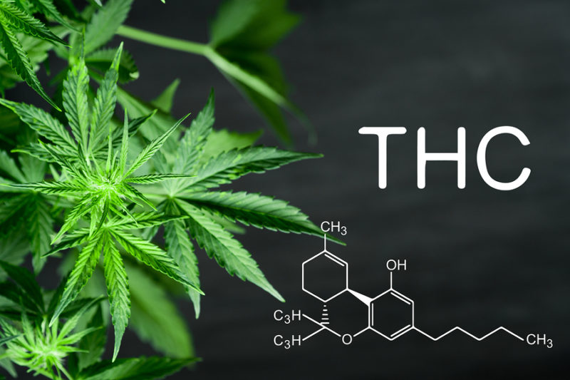 THC 101