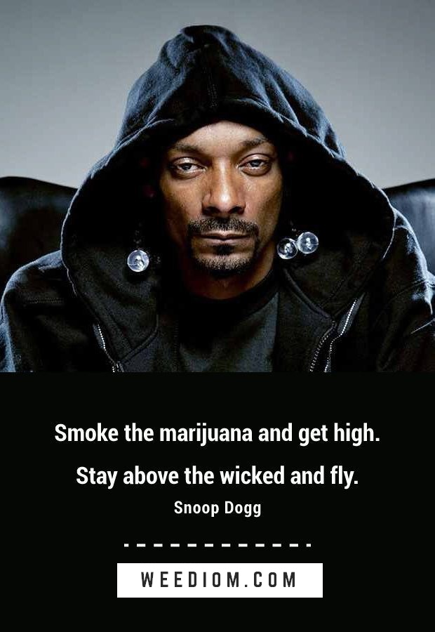 100 Best Weed Quotes of All Time Weediom